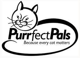 PP Logo 2